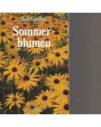 Der Garten - Sommerblumen