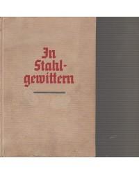 In Stahlgewittern - Ein...